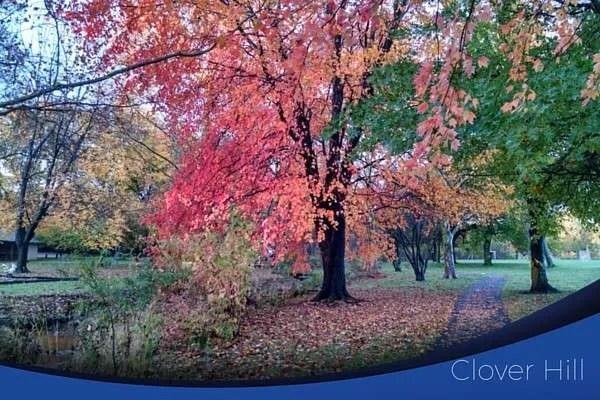 clover hill neighborhood