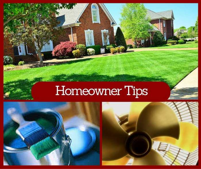 Increase your home value for Price your home online