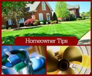 Lawn Care Tips for Home Owners