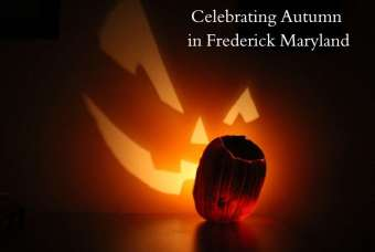 Fun Things to Do in Fall in Frederick Maryland
