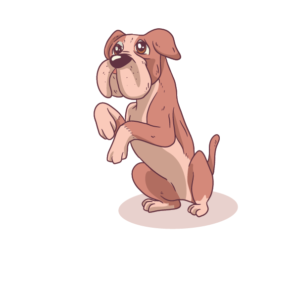 Cute Dogs Boxer