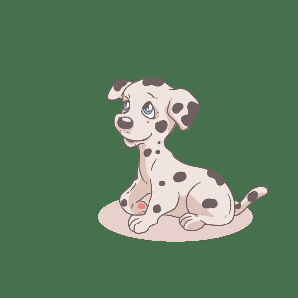Cute Dalmation