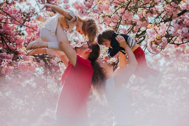 seance photo famille parc de sceaux cerisiers frederico santos
