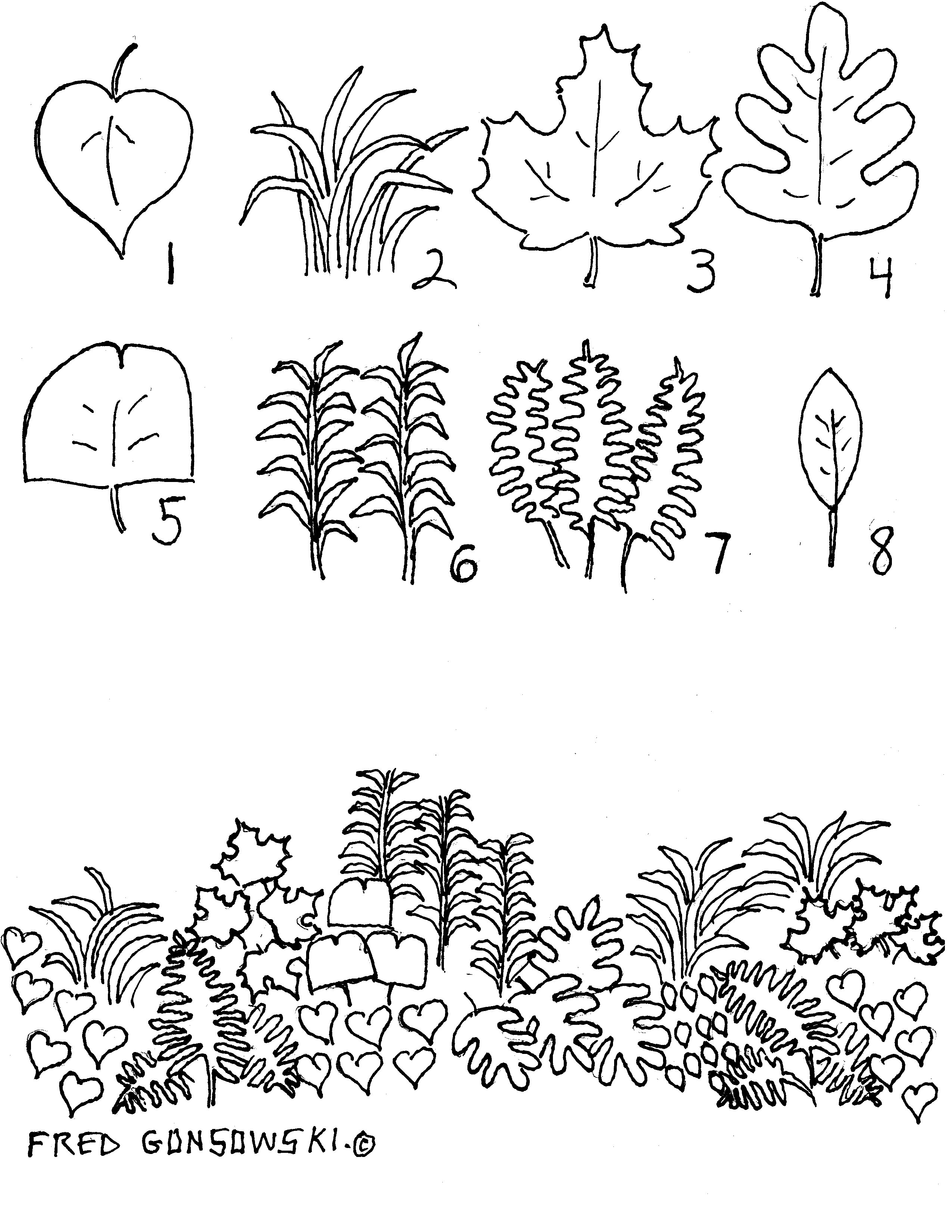 When Designing A Perennial Garden It S All About Shapes