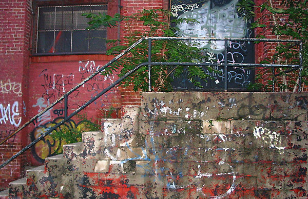 Weeds on Stairs, 2003, photo by Fred Hatt