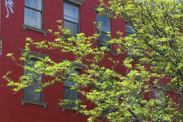 Spring Green and Brick Red, 2003, photo by Fred Hatt