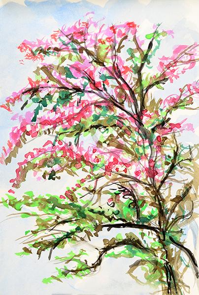 Pink Flowering Tree, 2013, by Fred Hatt