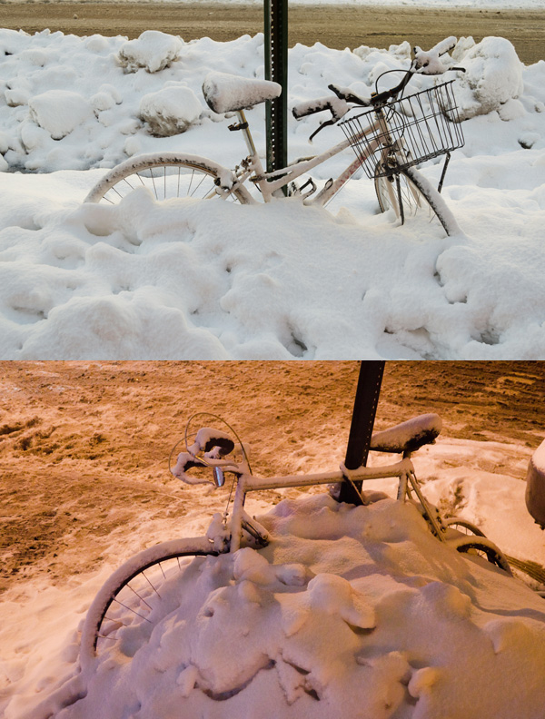 Buried Bike Variations, 2014, photo by Fred Hatt