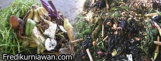 sampah-organik2