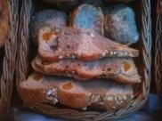 Damasco, pão com cerveja e centeio ...