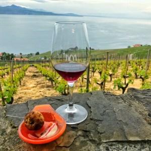 Takoyaki par Spoon Et Caetera, Vin Rouge du Domaine Porta avec la belle vue sur le Lavaux
