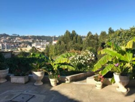 Loft Glamour Mangue-Ananas à Porto : Jardin