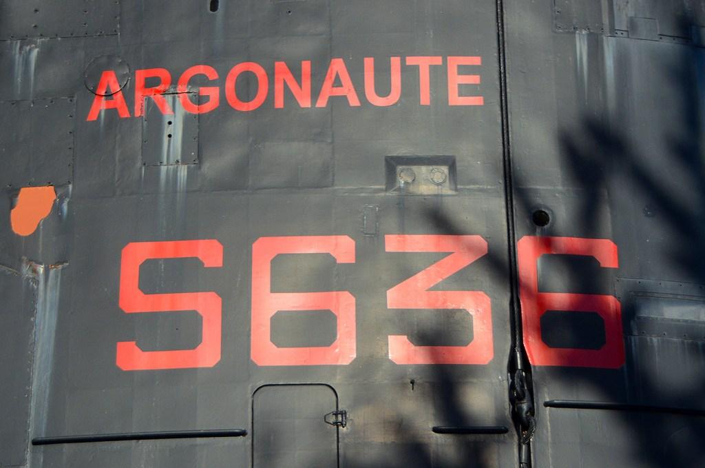 Argonaute