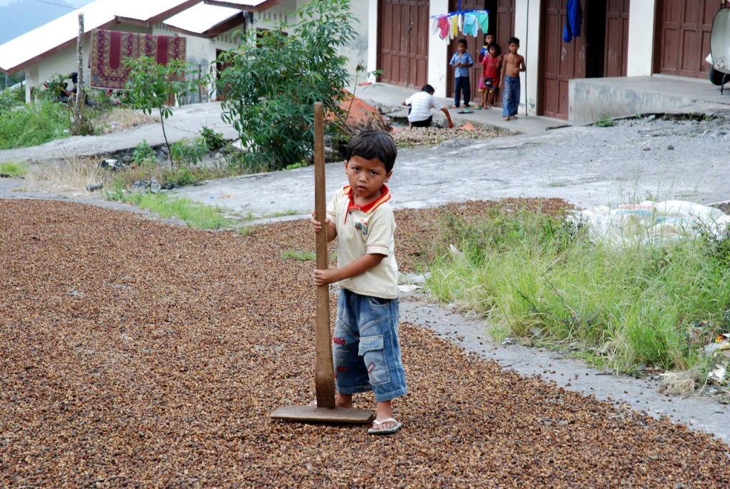 Kid helping out to dry the coffee