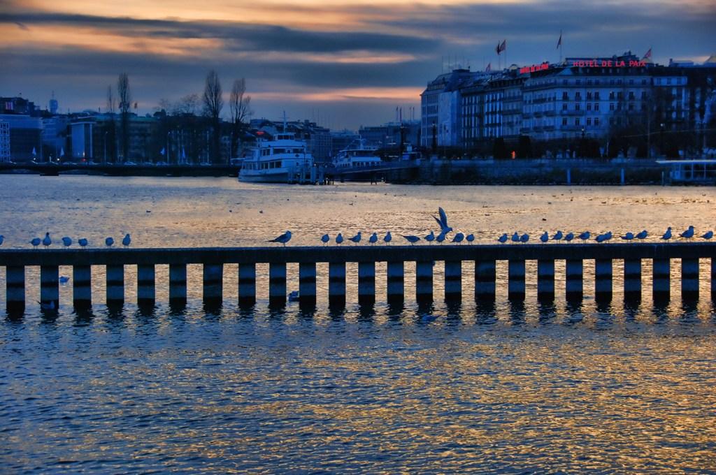 Lac léman, Geneva