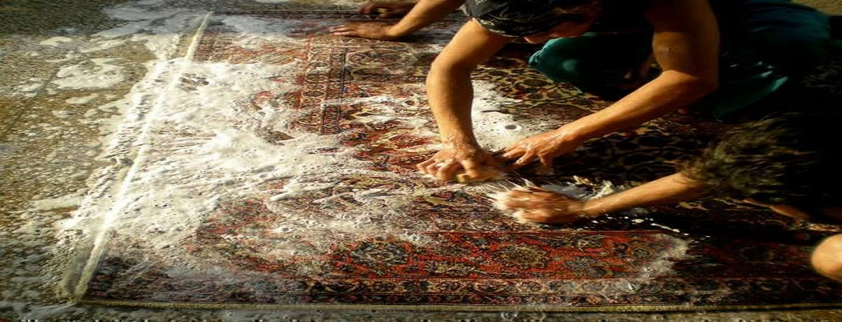 rug cleaning places