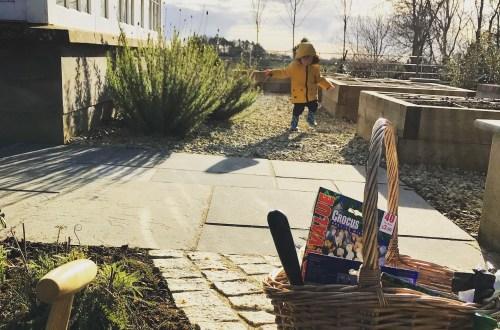 March in the kitchen garden