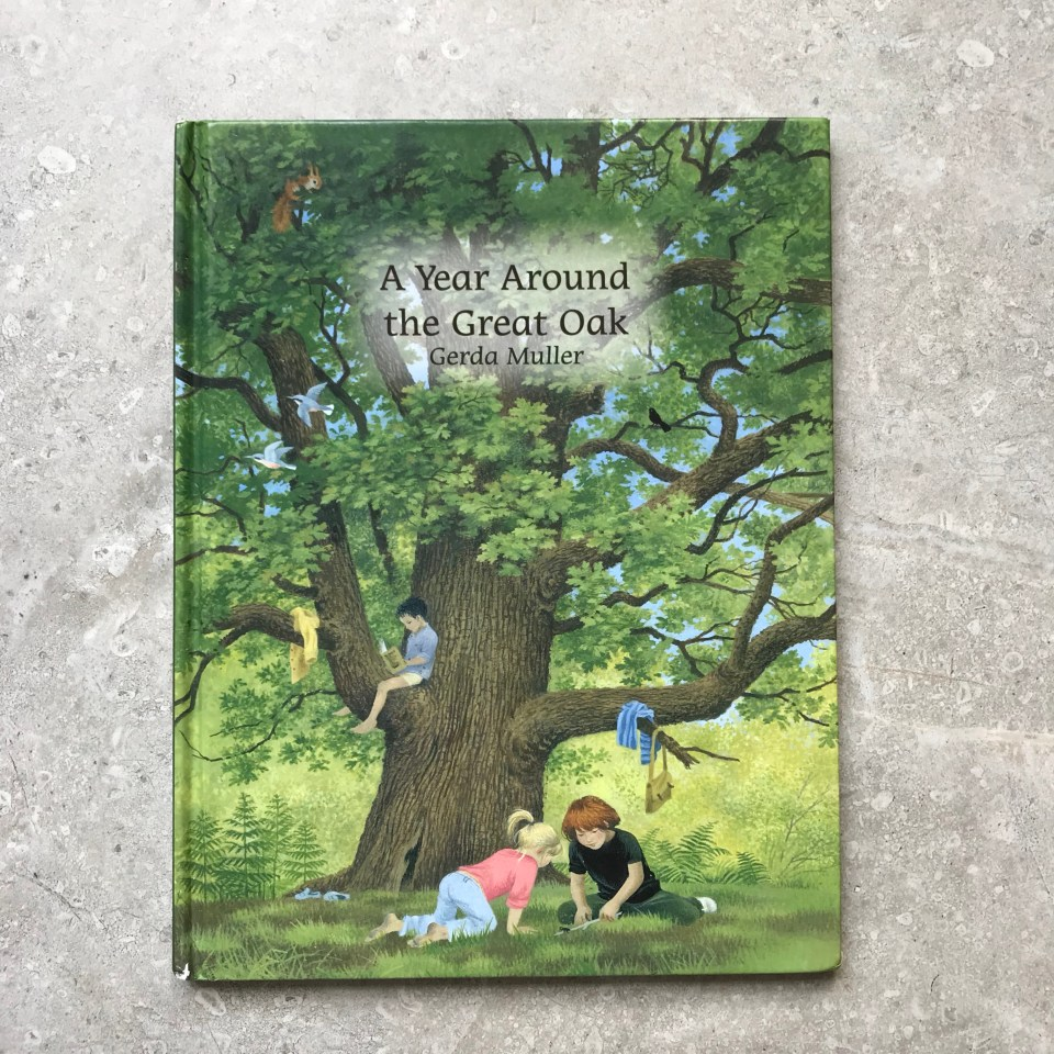 A Year Around The Great Oak children's book by Gerda Muller