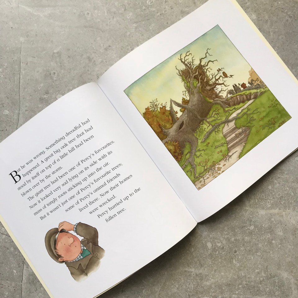 After The Storm by Nick Butterworth - Autumn Books for Children