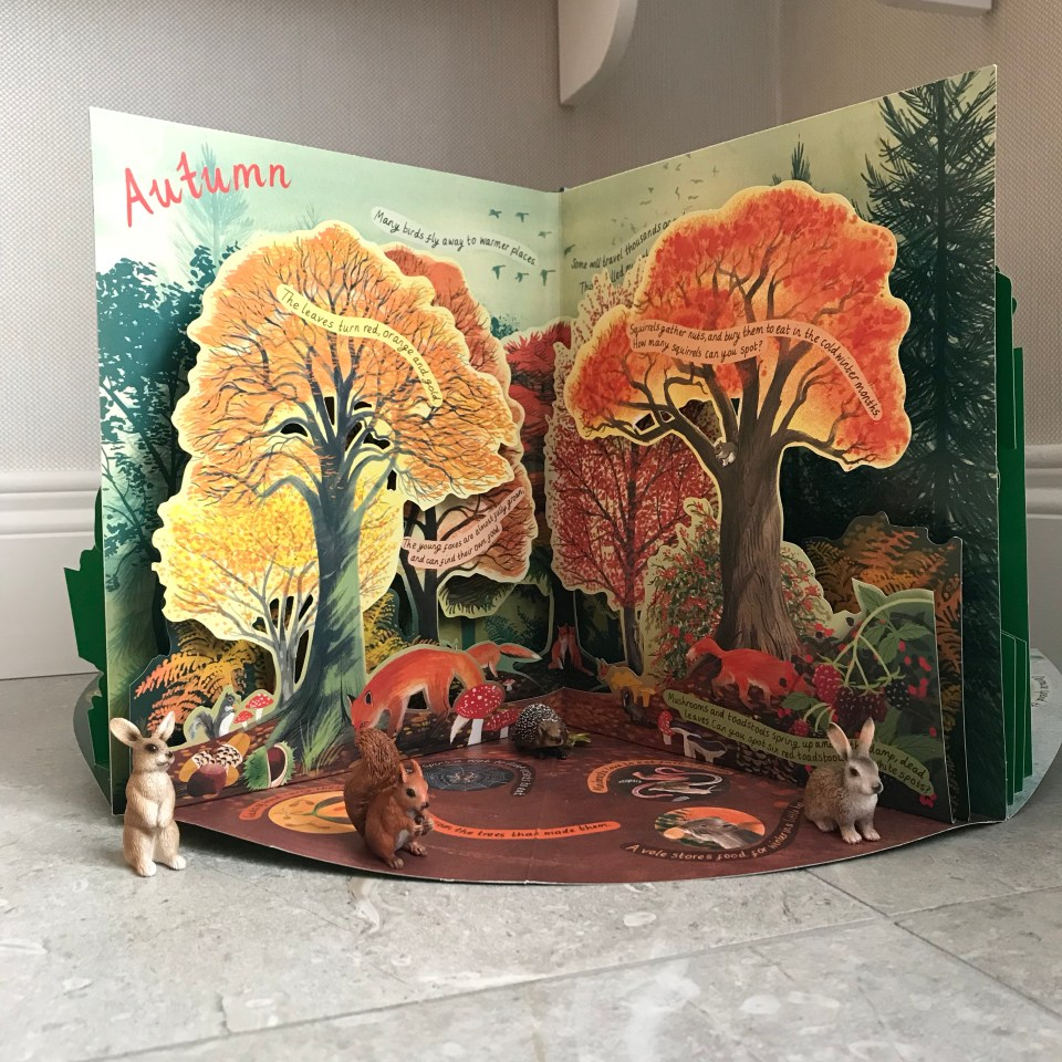A Year In Nature - A Carousel Book of the Seasons