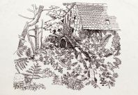 Lamorna Mill pen and ink