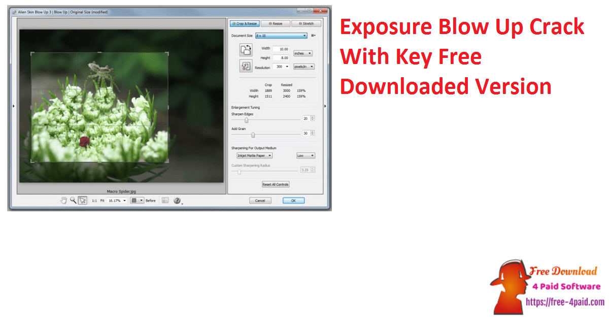 Exposure Blow Up Crack With Key Free Downloaded Version