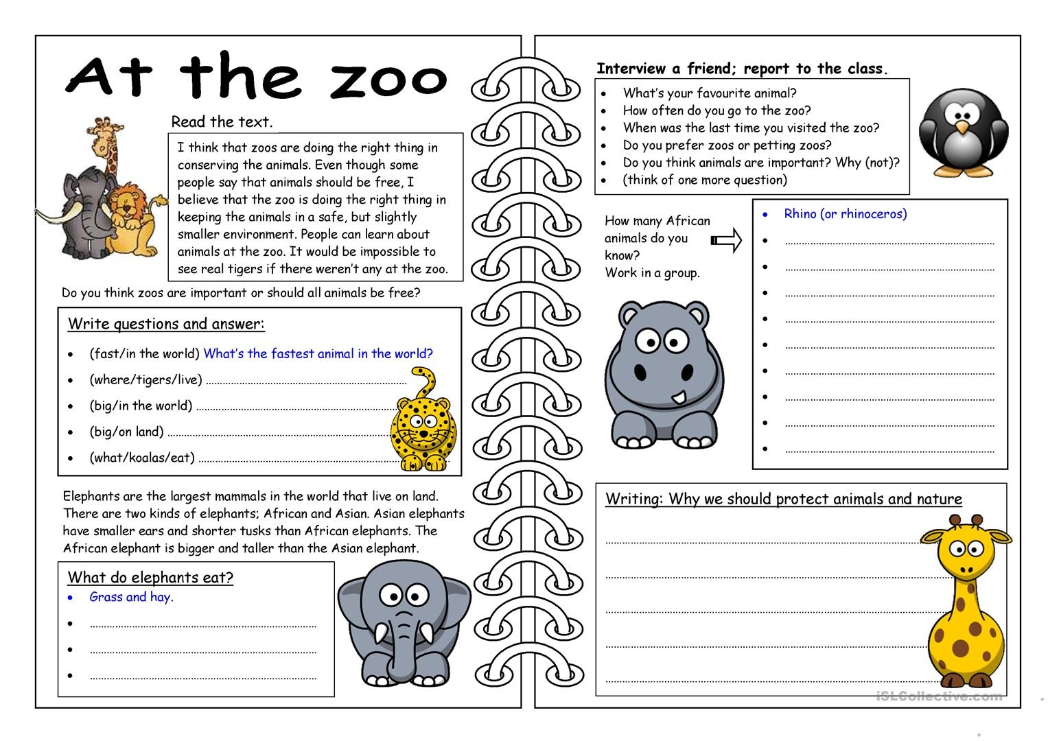 Dear Zoo Animal Bingo Worksheet