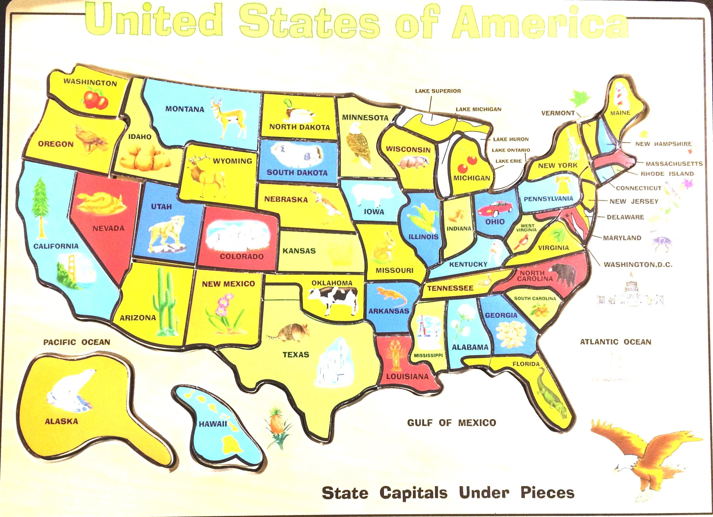 10 Unique Printable United States Map Jigsaw Puzzle