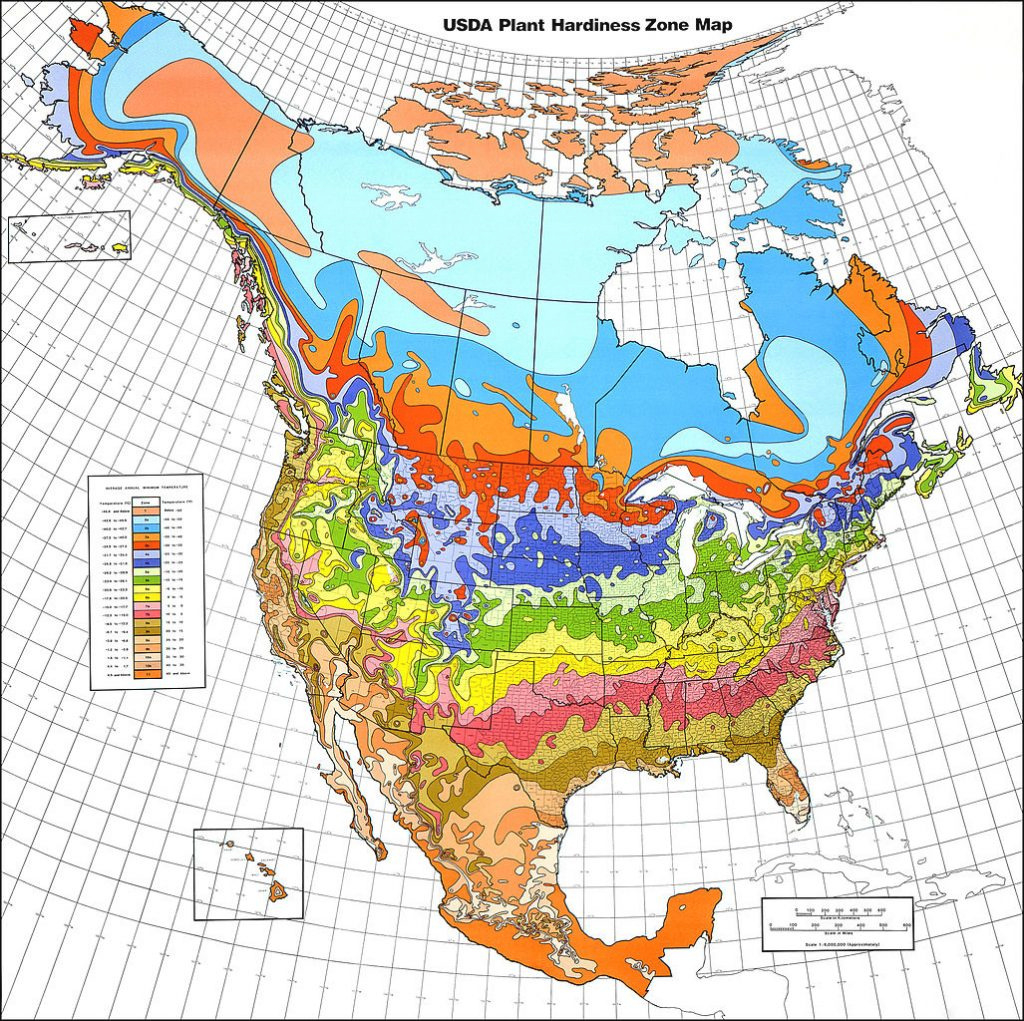 Map Of Planting Zones In United States