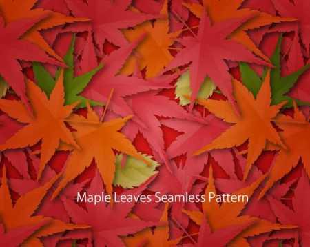 Maple-leaves-450x358