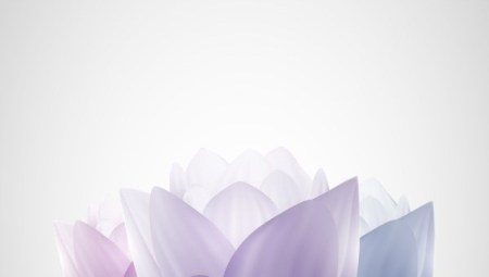 simple-and-stylish-mural-material-450x255