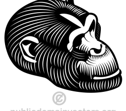 Gorilla Vector Clip Art