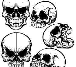 Hand Drawn Skull Free Illustrator Vector Pack