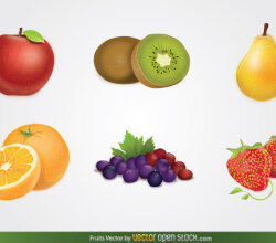 Fruits Vector Free Download