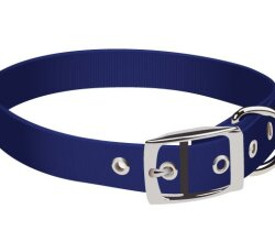 Vector Dog Collar