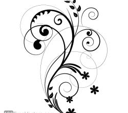 Vector Floral Design 2