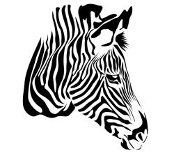Free Zebra Head Vector