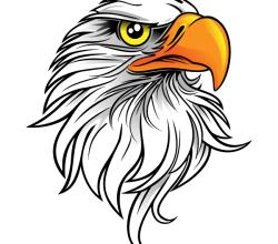 Eagle Head Free Clip Art