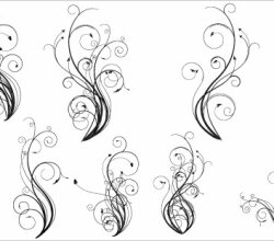 Hand Drawn Vector Flourishes