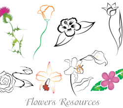 Free Flowers Vector Images