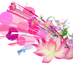 Vector Beautiful Pink Lotus Flower