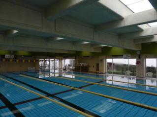 pool-pic11