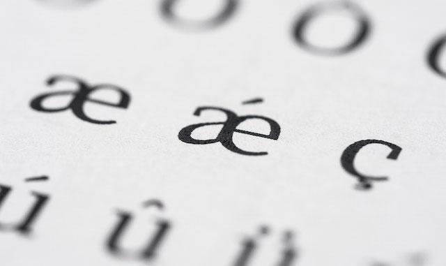Didactic 優雅、獨特且極具設計感的免費英文字型,可用於商業開發(OTF、TTF)