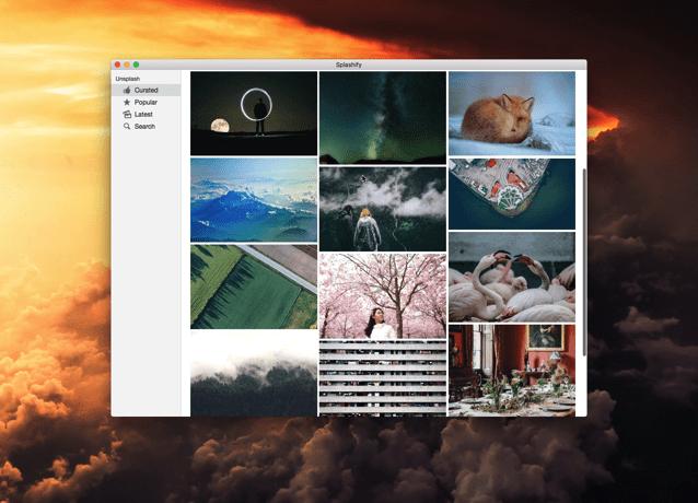 Splashify 超質感免費桌布下載!數千張專業攝影師作品一鍵設成桌布背景