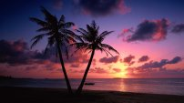 download-pink-beach-sunset-wallpaper