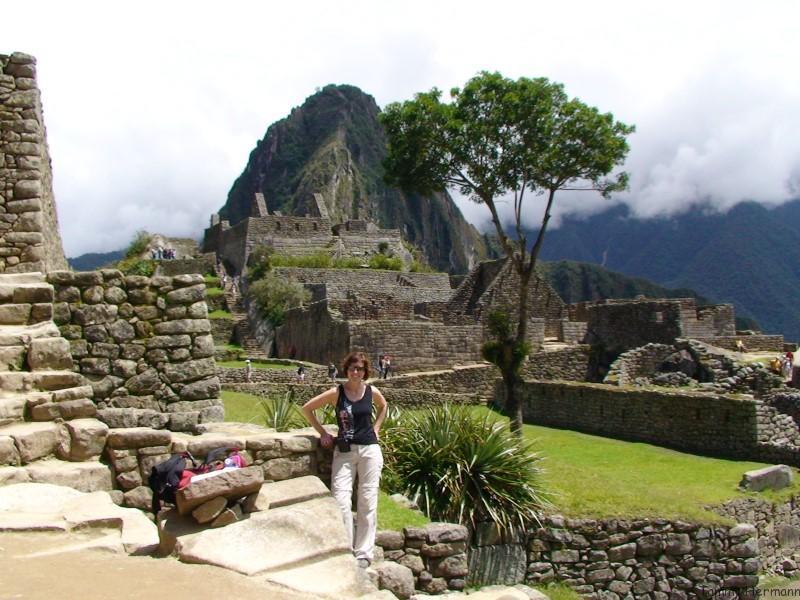 Machu Picchu Sacred Tree
