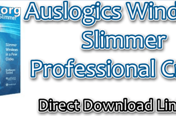 Auslogics Windows Slimmer Professional Crack
