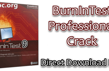 BurnInTest Professional Crack