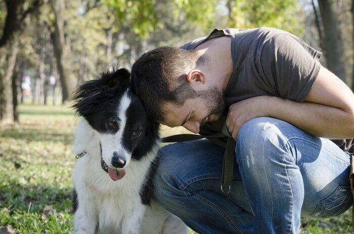 Show Affection Do How Dogs