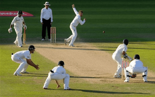 cricket best sport to bet on